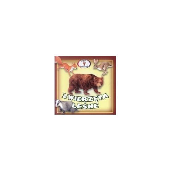Zwierzęta leśne - świat malucha