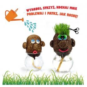Pan Trawiastogłowy hoduj trawę na głowie trawa N1